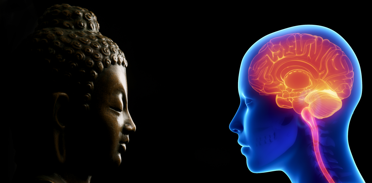 brain-meditation-1200x590.png